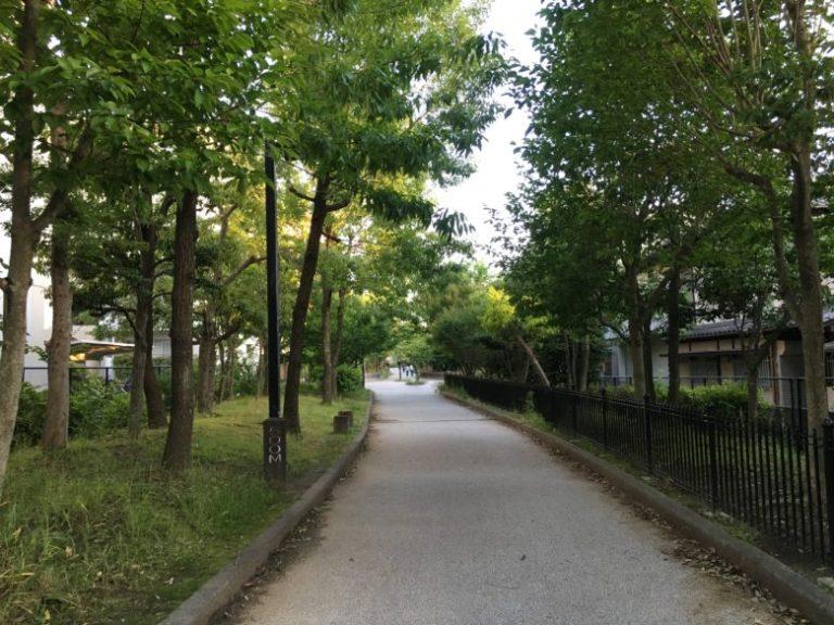 梅光園緑道 夕方の様子