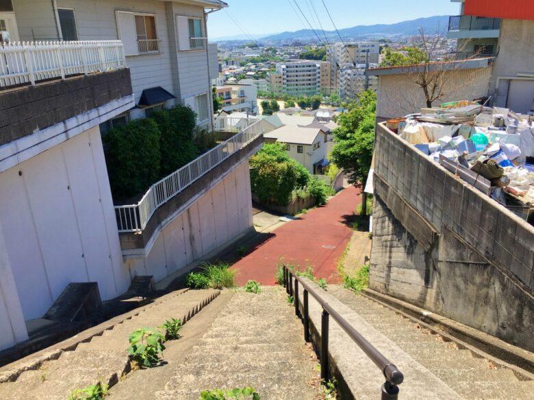 南区大池の階段