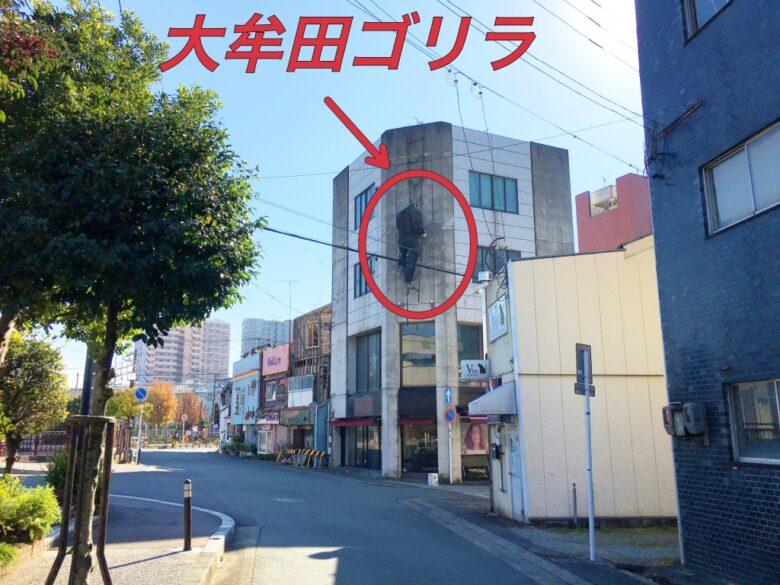 大牟田ゴリラ